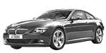 Запчасти для BMW (БМВ) 6' E63 Рестайлинг