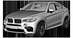 Запчасти для BMW (БМВ) X6 M F86